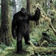 "Bigfoot fanatics claim that a ""nest"" of trees found in the Kemerovo region is evidence that the creature was roaming the region and building homes in the same way that orang-utans or gorillas would. Bigfoot experts from Russia, Canada, the US and Sweden recently met at a conference in Moscow […]"