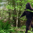 Enjoy this video of Sasquatch – The Quest as once again the forests of North America are searched for evidence of the elusive Sasquatch (Bigfoot). Is it real or is it just in the imagination of men? Perhaps time will tell…