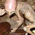 Mexican Alien Baby: Is this bizarre creature really an alien baby or just part of an elaborate hoax – and was it the cause of a mysterious revenge death? Mexican TV revealed the almost unbelievable story – in 2007, a baby 'alien' was found alive by a farmer in Mexico. […]