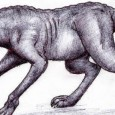1. CHUPACABRA Chupacabra means goat sucker. The legendary animal is said to roam through Mexico, southwest USA, and Puerto Rico as well as other areas. The Chupacabra is blamed for mysterious livestock deaths, and examples of Chupacabras have been found and photographed, usually dead. The creature is described variously as […]