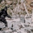 A great compilation clip featuring 20 of the most convincing Bigfoot/Sasquatch sighings captured on film.