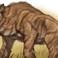 From living dinosaurs, giant cats, bipedal apes to immense lizards, the dark continent of Africa is home to many legendary animals. Could any of these creatures actually live amongst it's dense jungles and unchartered waterways?