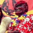 """The Nain Rouge, French for """"red dwarf"""", is a mythical creature that some believe originated in Normandy, France, as a type of lutin. Contrary viewpoints speculate that the alleged creature is more closely related to the Algonquin myths of """"Glooscap"""" who, it is said, created protective nature spirits and dwarves […]"""