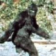 IT lasts for only 59.5 seconds, but the Patterson-Gimlin film is one of the world's most infamous and heavily scrutinised works ever produced. The year was in 1967 and two cowboys from Washington's apple country were deep in the forest of Northern California in search of a large, hairy, bipedal […]
