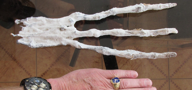 Brien Foerster, of Hidden Inca Tours, and his team claim to have been given the three-fingered specimen by a group of cagers who were exploring desert tunnels in southeastern Peru. The explorers said it was found near a strange elongated humanoid skull that was also given over. There have been […]