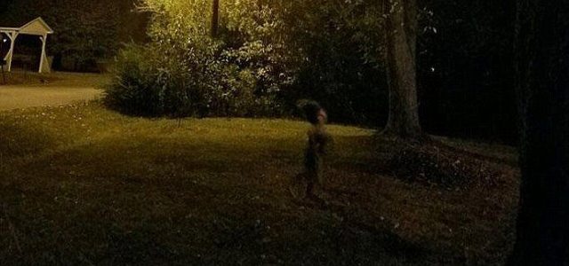 A Reddit user has uploaded an image of what appears to be a strange figure running through a garden. The photograph is one of two images that were taken by a light-sensitive camera approximately two seconds apart. The earlier of the two pictures however didn't show anything unusual. Nobody who […]