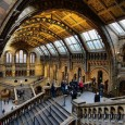 It is Britain's own version of the X-files – a unit of experts who specialise in unravelling the origins of mysterious slimes, animals and objects found around the country. Tucked away in a quiet corner of the Natural History Museum in London are a series of laboratories that would not […]